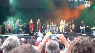 Wolfgang Ambros Live Donauinselfest 2013 HD (fast Komplett)