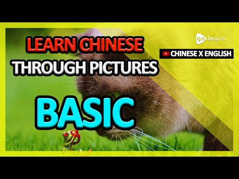 Learn Chinese Through Pictures |Chinese Vocabulary Basic | Golearn