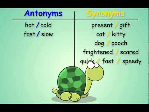 Antonyms and Synonyms - YouTube