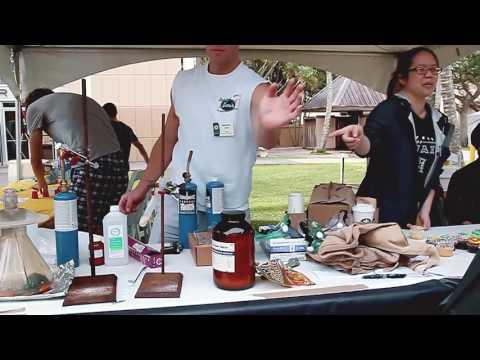 University of Hawaii Mānoa Experience Spring 2017