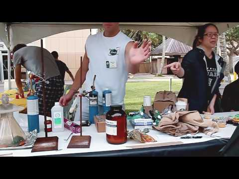 University of Hawaii Mānoa Experience Spring 2017