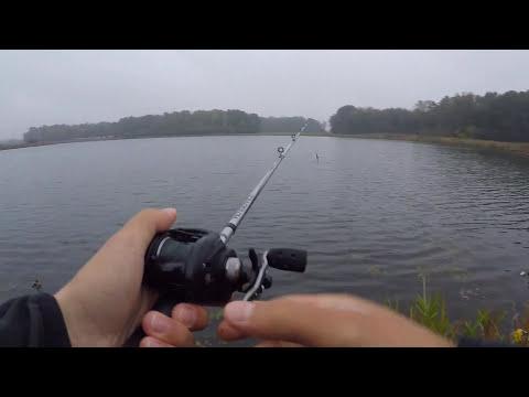 Illinois Rainbow Trout Fishing Fall 2016 - GoPro
