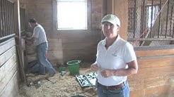 Horse Facilities: Barn Maintenance