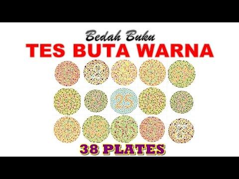 Bedah Buku TES BUTA WARNA 38 PLATES