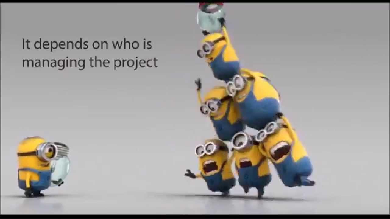 software development project management