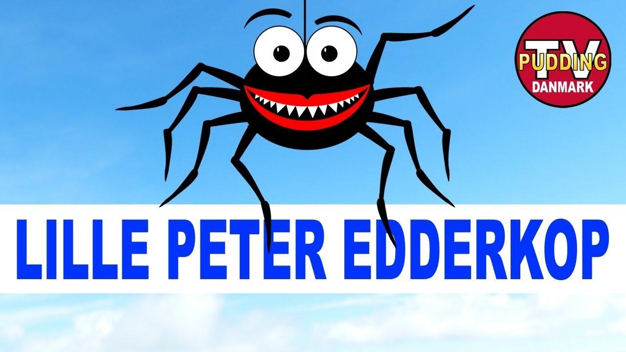 Lille Peter Edderkop - Danske børnesange