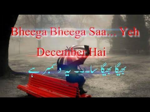 Bheega Bheega Sa Yeh December Hai Whatsapp Status | Best Whatsapp Status Video | December Special