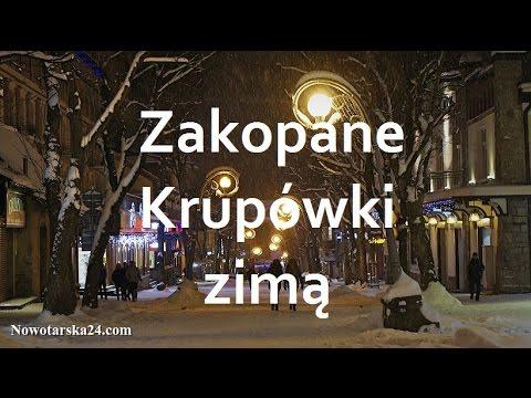 Dog Day Polska  Grudnia