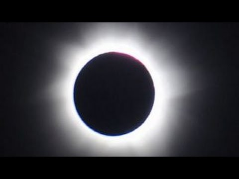 fallback-no-image-8469