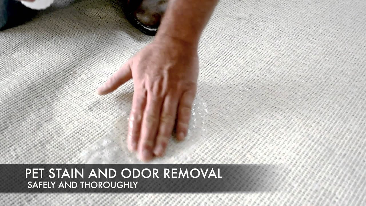 Shag Rug Cleaning by EnviroClean