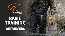 Basic Training :: Retrievers