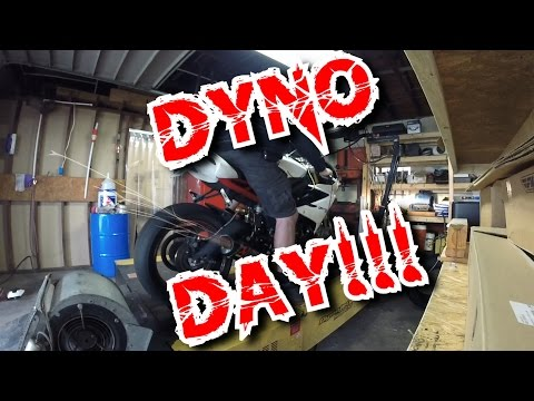 Triumph Daytona R DYNO DAY / Sophia Unleashed!!!