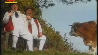 Die Wildecker Herzbuben - Jodeldadeldi (1999)