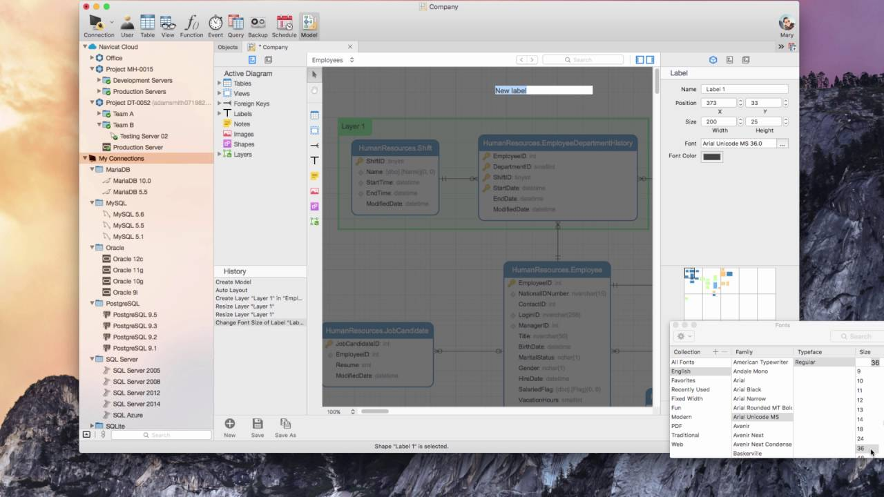 How to organize objects and embellish your database model in Navicat? (Mac  OS X)