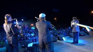 "DON CARLOS & Dub Vision ""Johnnie Big Mouth"" Live @ OSTRÓDA REGGAE FESTIVAL 2013 / Poland"