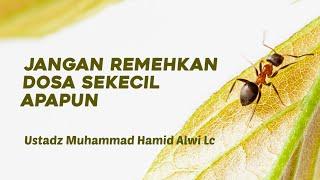 Ceramah Singkat - Jangan Meremehkan Dosa Sekecil Apapun - Ustadz Muhammad Hamid Alwi, Lc.