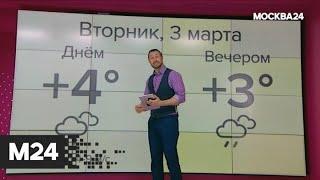 """""""Погода"""": дождливая погода пришла в столицу - Москва 24"""