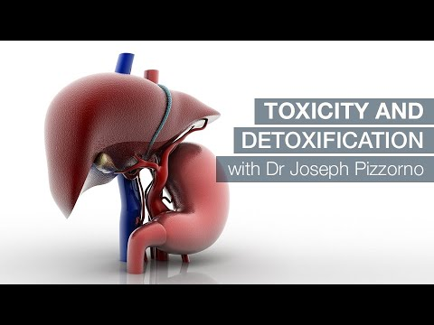 Toxicity and Detoxification with Dr Joseph Pizzorno