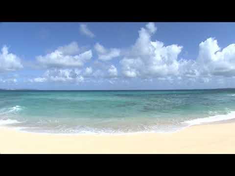 【癒やしBGM】5時からバンドBEGINと過ごす沖縄オーシャンウィークエンド! ~癒しの誓い~