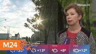 Смотреть видео Москвичей ожидает сильное похолодание - Москва 24 онлайн