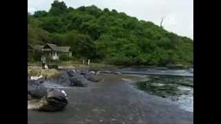 Таиланд: вместо белоснежного песка -- тонны нефти (новости)(http://www.ntdtv.ru Таиланд: вместо белоснежного песка -- тонны нефти. На белоснежных пляжах Таиланда -- настоящая..., 2013-07-30T13:34:39.000Z)