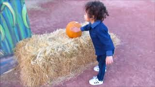 Moapa Valley Corn Maze Part 1!! | Omj Family