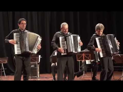 JOTA VASCA / Amigos del Acordeon Rias Baixas,/ Trio Meco