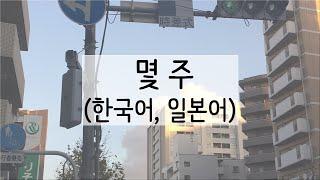 [단어+예시]일본어 원어민 발음으로 ~주 배우기 DAY…
