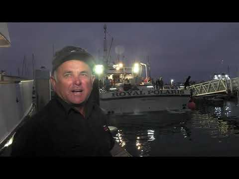 What Separates The Royal Polaris -  Roy Rose Interview