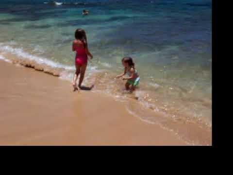Hawaii 2004 100 0557