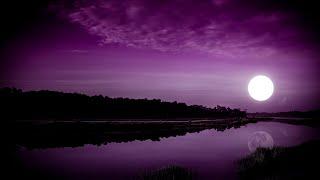 Insomnia Healing ★︎ Improve Your Immune System ★︎ Dark Screen, Melatonin Release