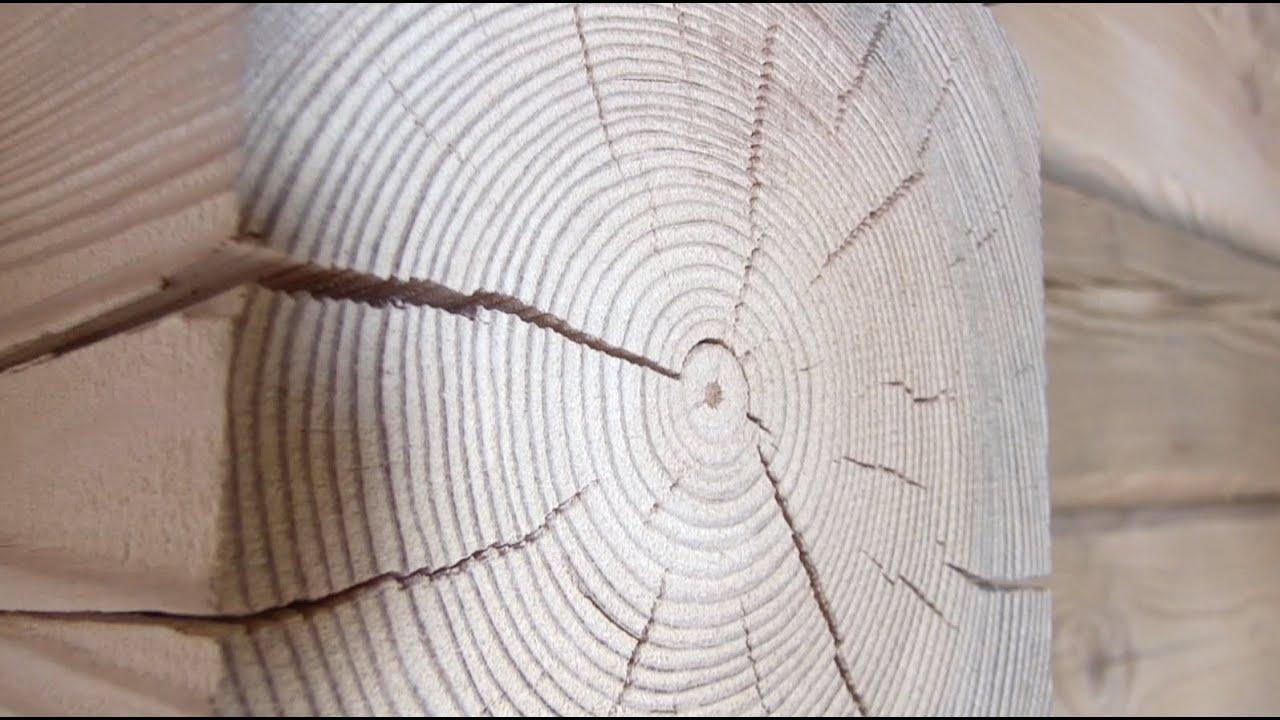 geriausia mediena, skirta deginti riebalus riebalų deginimas pritūpęs trauka