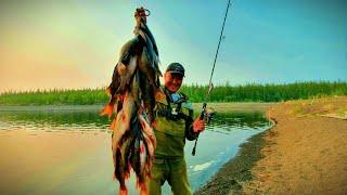 Рыбалка в Якутском море