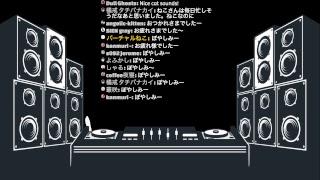 [LIVE] ねこ活動オンライン: ねこなのにDJ練習