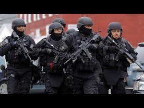 Download Memes, die das SWAT schaut! | Minimemes #5