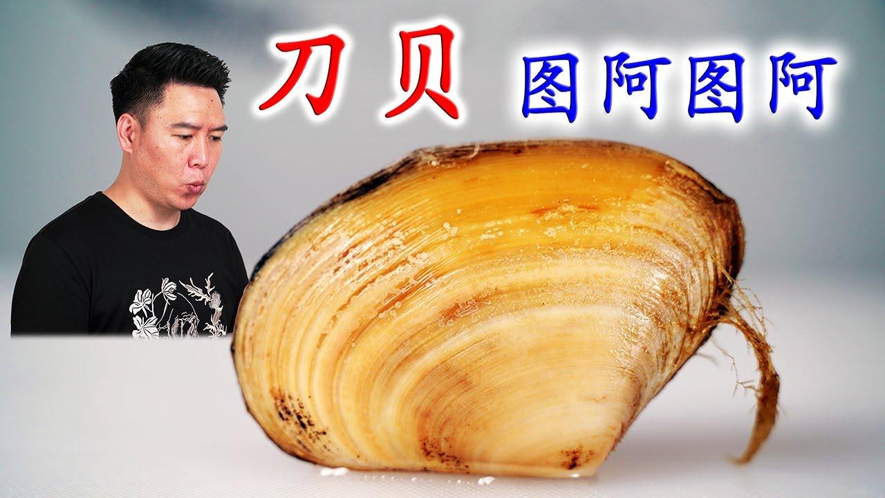 """一种叫""""图阿图阿""""的贝壳,长得相当不正经,蒜蓉烤把我给吃撑了【小文哥吃吃吃】"""