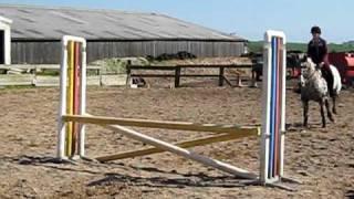 Cheyenne jumping
