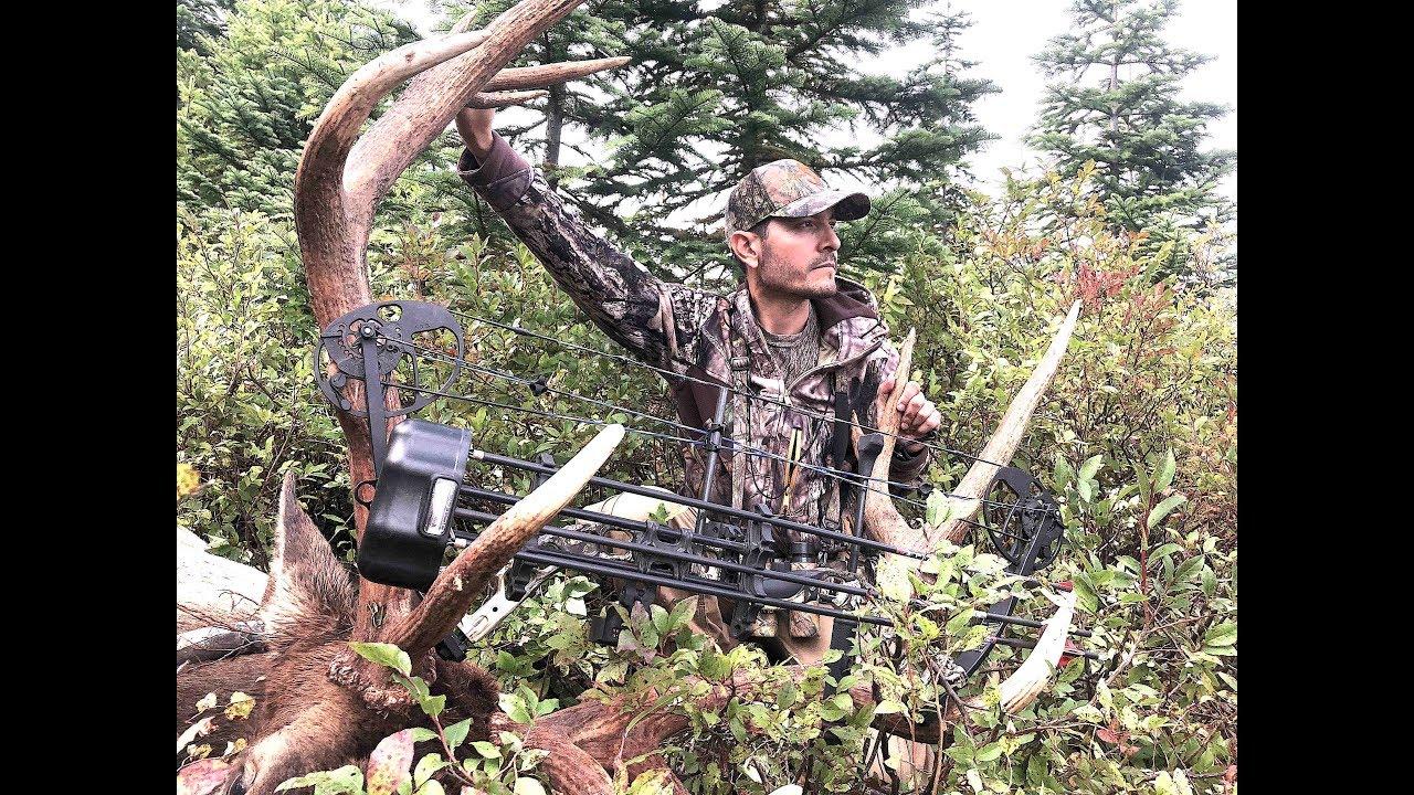 caza-mayor-con-arco-caza-y-pesca