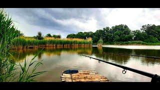 ВЛОГ Рыбалка в Дождь на Флэт