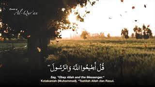 Download Video Surah Ali-'Imran 31-33 MP3 3GP MP4