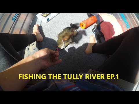 Fishing The TULLY RIVER EP.1