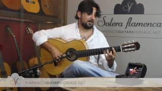 Antonio Rey in Solera Flamenca: INTRO & ALMA