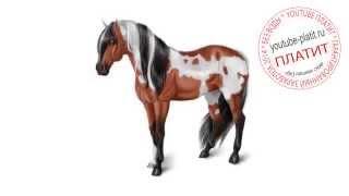 Картинки лошади нарисованные  Как научиться рисовать лошадь(как нарисовать лошадь, как нарисовать лошадь поэтапно, как нарисовать карандашом лошадь, как нарисовать..., 2014-08-07T06:13:55.000Z)
