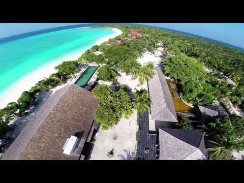 GET TO KNOW THE BAREFOOT ECO HOTEL IN 60 SECONDS