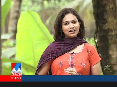 Veedu manorama anchor from superamminikutty youtube for Manorama veedu photos