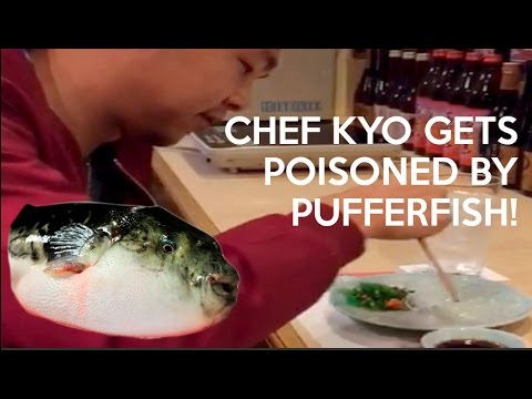 Episode 3: Kyo Eats Japan and Gets Poisoned By Fugu!