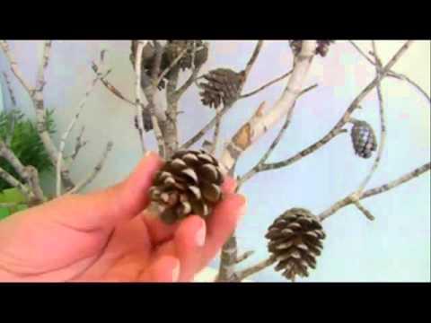 Diy arbol de navidad con ramas secas youtube - Ramas de arboles ...