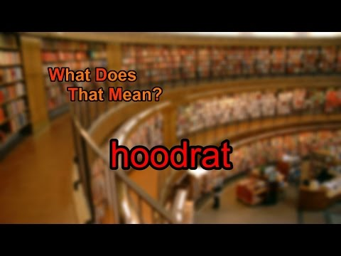 What does hoodrat mean?