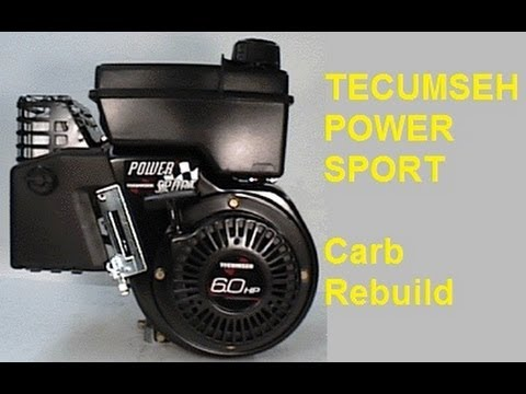Tecumseh Go Kart power sport engine Carburetor Cleaning part 1 - YouTube