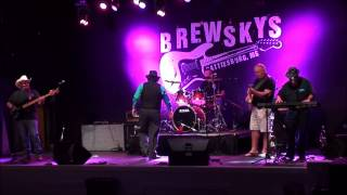 Cowboy Blues Band live @ 2014 Pink Ribbon  Music Festival